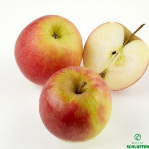 Apfel Arlet