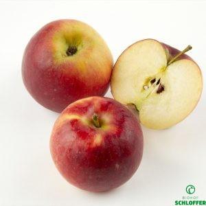 Apfel Crimsoncrisp
