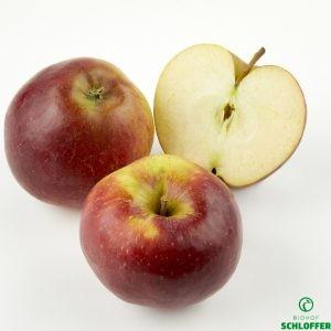 Apfel Elise